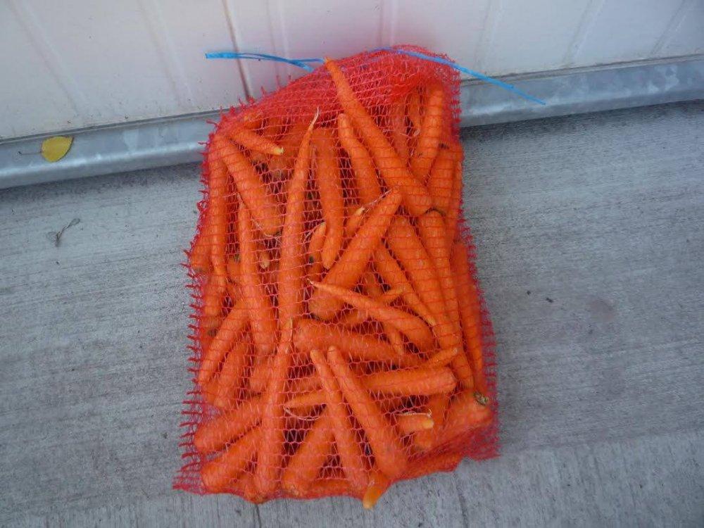 Buy Carrots with Polish