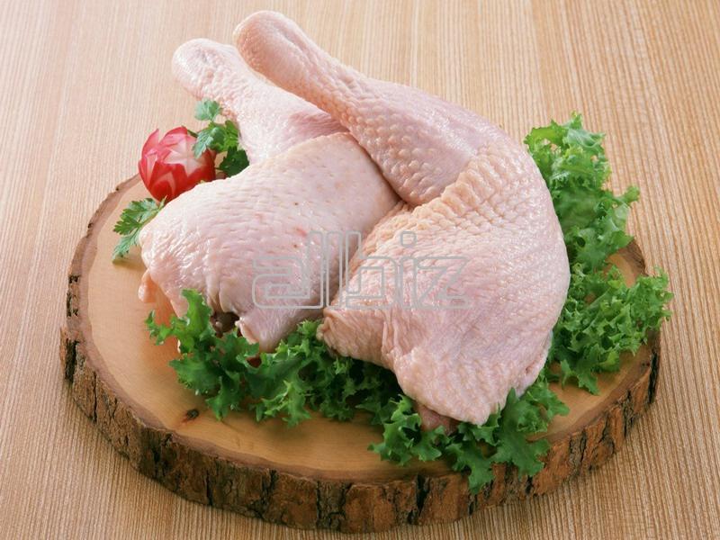 Kupić Ćwiartki z kurczaka, ćwiartki drobiowe