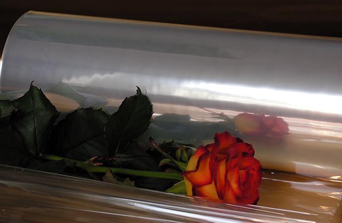 Kupić Folia w rulonach do pakowania kwiatów