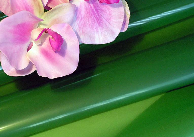 Kupić Folia lakierowana matowa do pakowania kwiatów