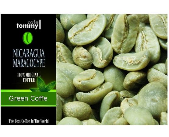 Kupić Zielona kawa Nikaragua Maragogype 1kg