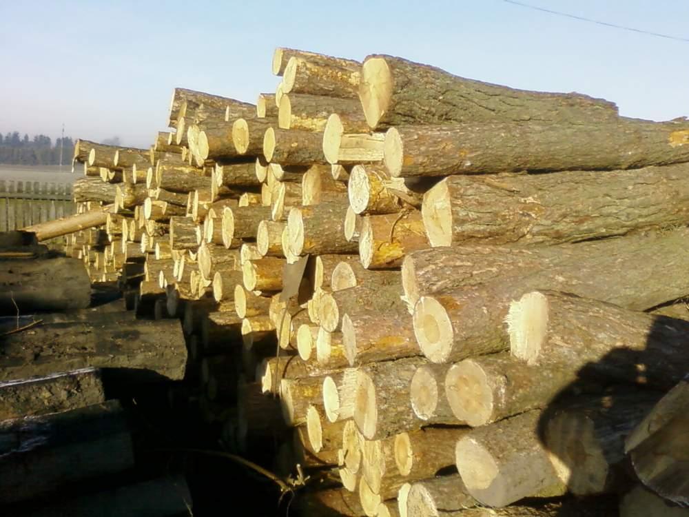 Kupić Drewno sosnowe.