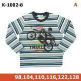 Kupić Bluza chłopięca K 1002-8
