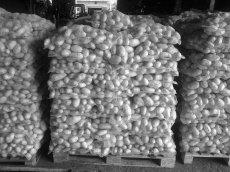 Kupić Ziemniaki stołowe z Polski