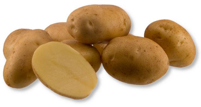 Kupić Ziemniaki Arielle , odmiana jadalna do wczesnej uprawy , jadalna odmiana ziemniaka , ziemniaki , Arielle