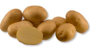Kupić Ziemniaki Agata , ziemniaki jadalne , bardzo wczesna odmiana ziemniaka , ziemniaki , Agata