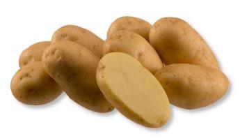 Kupić Ziemniak Impala , ziemniaki , bardzo wczesna odmiana ziemniaka , Impala