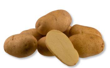 Kupić Ziemniak Ambassador , sadzeniaki ziemniaka , odmiana frytkowa ziemniaka , Ambassador
