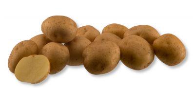 Kupić Ziemniak Energie , ziemniaki skrobiowe , średnio- późna odmiana ziemniaka , Energie
