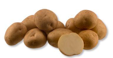Kupić Ziemniak Kuras , odmiana skrobiowa ziemniaka , późna odmiana ziemniaków, Kuras