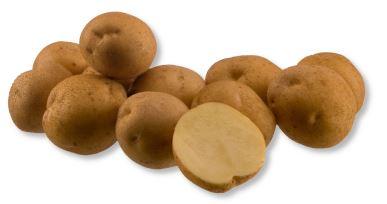 Kupić Ziemniak Arsenal , ziemniaki chipsowe , odmiana średnio wczesna , Arsenal