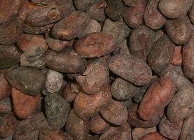 Kupić Błonnik kakaowy przemysłowy , kakao