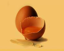 Kupić Jaja kurze jadalne.
