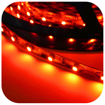 Kupić Taśma LED 12V 24W - czerwona / czerwony SMD3528.