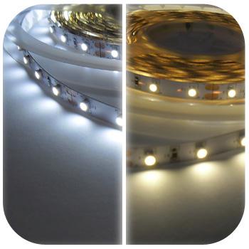Kupić Taśma LED 12V 24W - biała zimna / ciepła SMD3528.