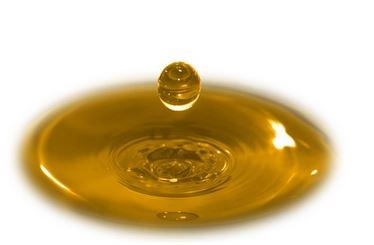 Kupić Olej słonecznikowy