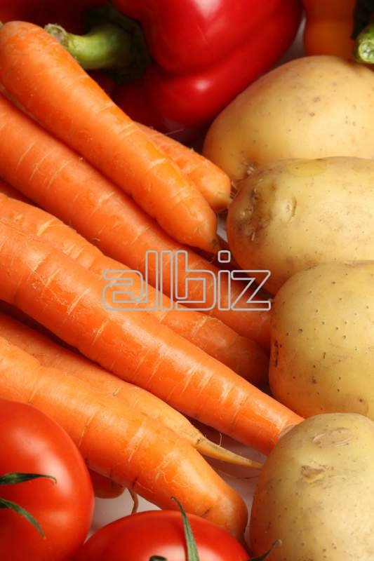 Kupić Sprzedaż świeżych warzyw.