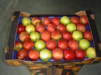 Kupić Jabłka soczyste i świeże z przeznaczeniem na eksport