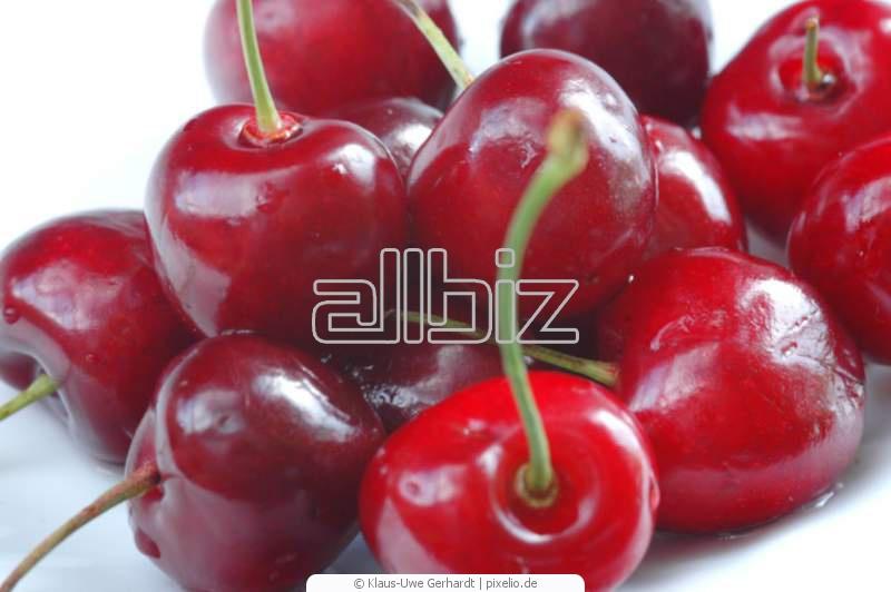 Kupić Wiśnie mrożone