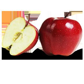 Kupić Jabłka odmiany GLOSTER