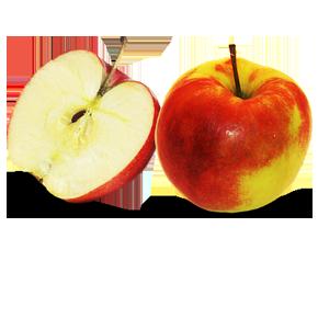 Kupić Jabłka JONAGOLD