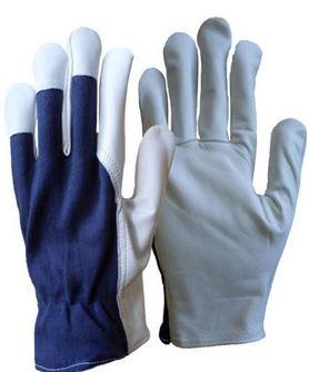 Kupić Rękawice skórzane