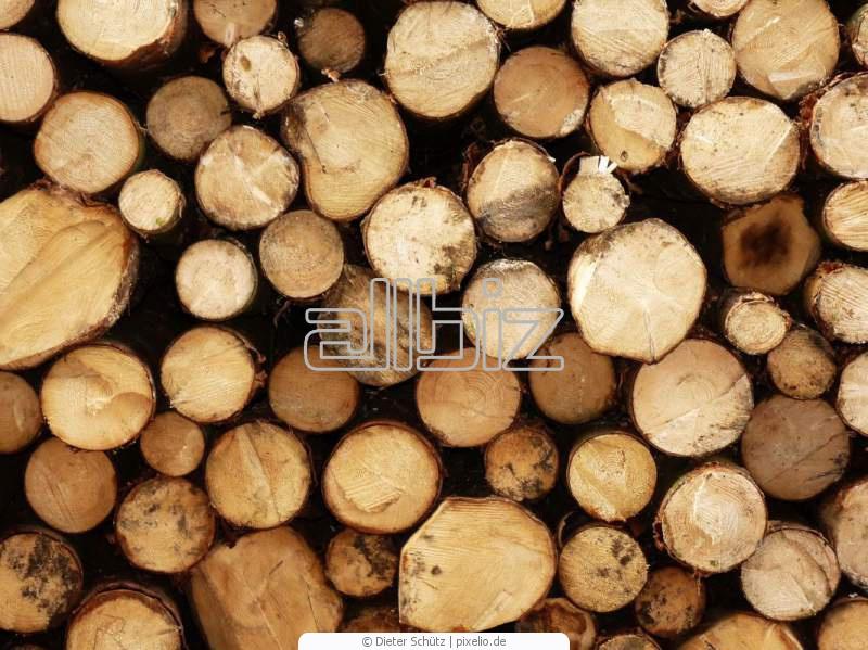 Kupić Drewno budowlane.