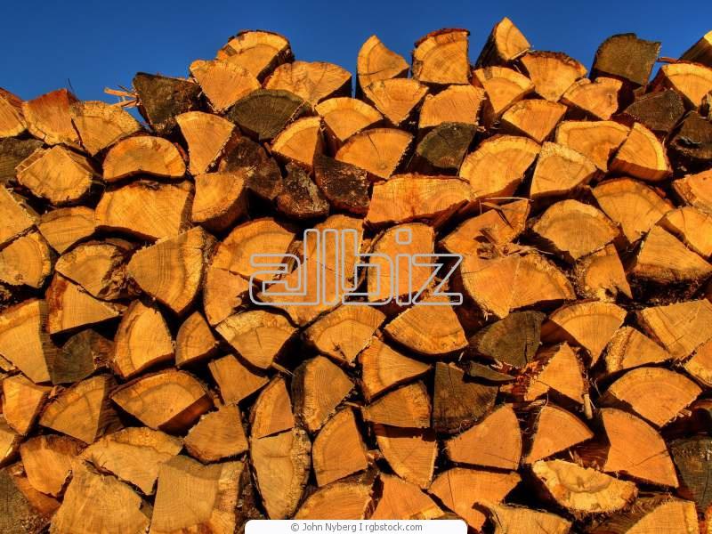 Kupić Drewno budowlane okrągłe.