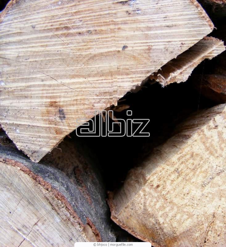 Kupić Drewno okrągłe budowlane.