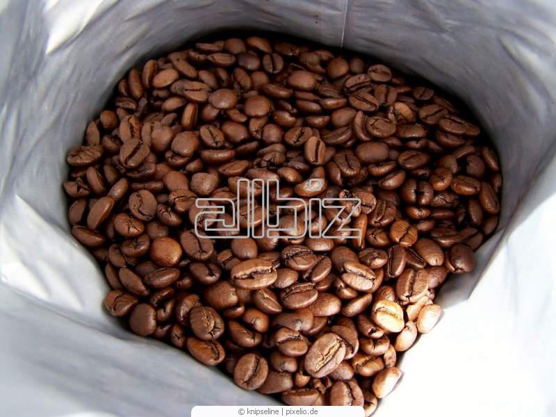 Kupić Kawa, ilości całokontenerowe