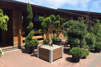 Kupić Meble ogrodowe z drewna polimerowego