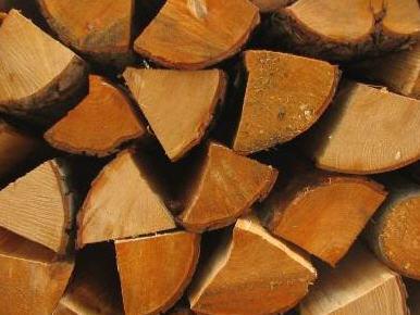 Kupić Drewno kominkowe olcha 1MP