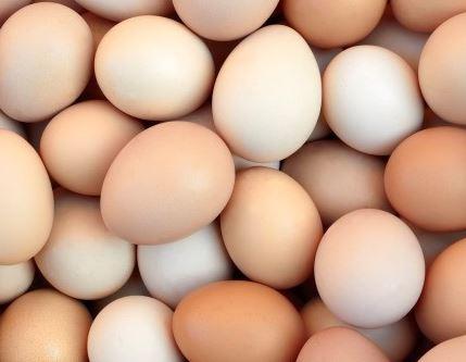 Kupić Jaja, Jaja konsumpcyjne, Jaja jadalne, export jaj, transport jaj, skup jaj, sprzedaż jaj, hurt jaj,pakowanie jaj