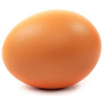 Kupić Jaja hurt