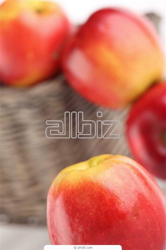 Kupić Świeże jabłka odmiany idared