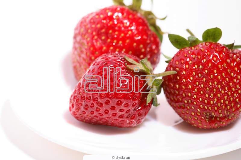 Kupić Owoce świeżych truskawek deserowych