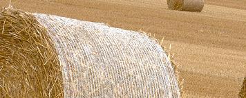 Kupić Biomasa