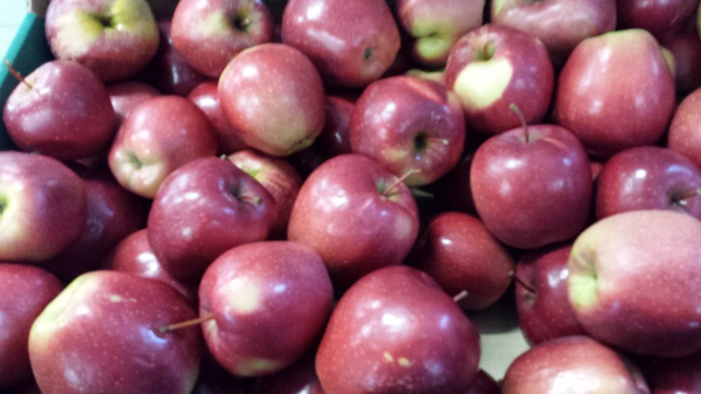 Kupić Jabłka, kapusta pekińska, papryka, bakłażan, cukinia