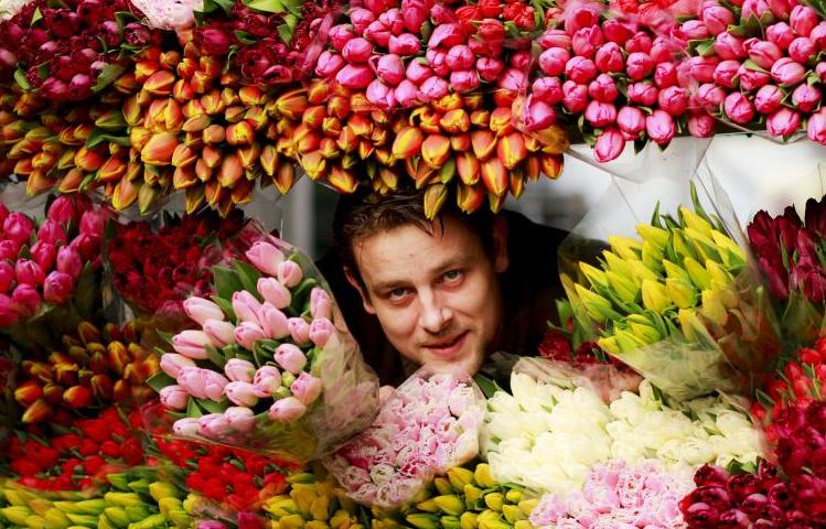 Kupić Kwiaty cięte