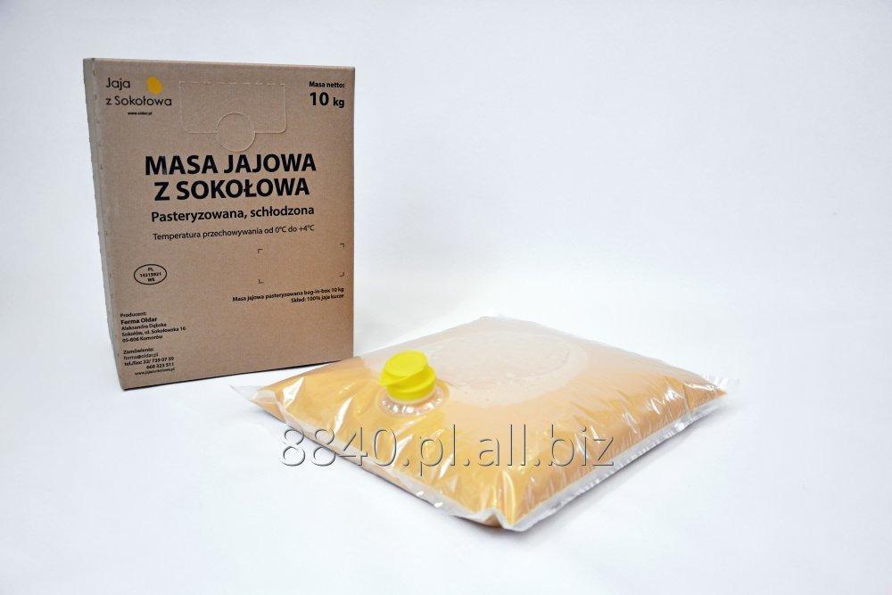 Kupić Masa Jajowa pasteryzowana schłodzona