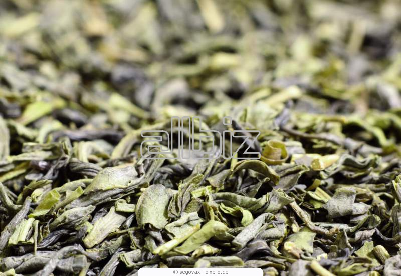 Kupić Herbata zielona