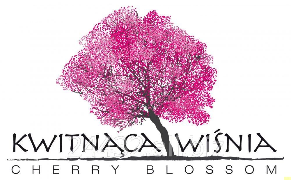Drzewka wiśni łutówki, podkladka Antypka, Prunus Mahaleb