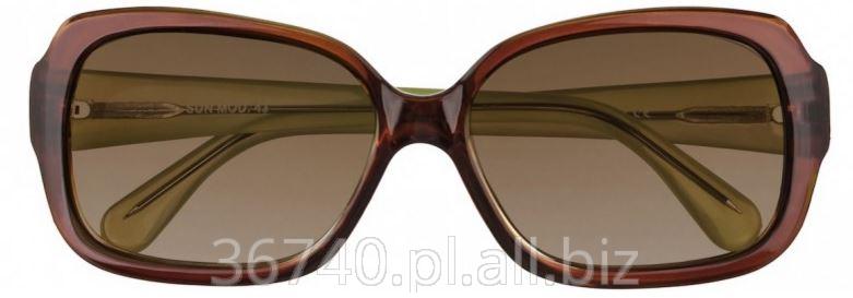 Kupić Okulary SUN MOD. 43
