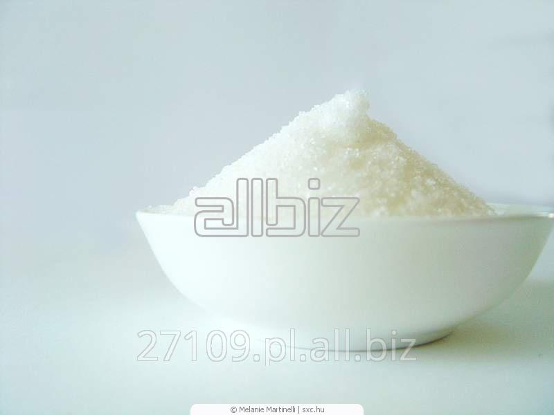 Kupić Cukier