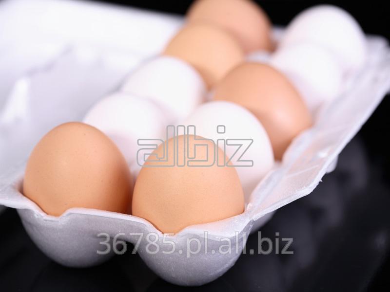 Kupić Jajka kurze, rozmiar L