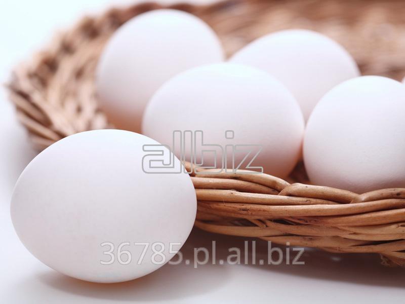 Kupić Kurze jaja, rozmiar S.