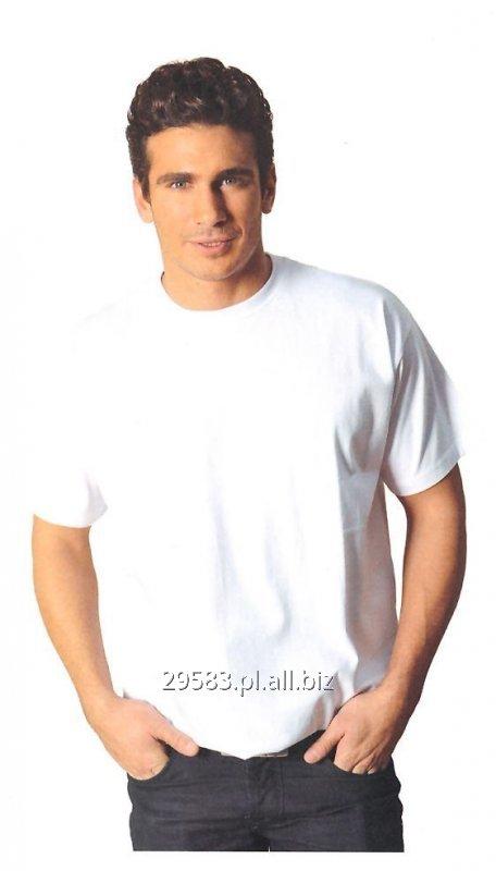 Kupić Koszulki typu T-Shirt - hurtowe ilości - WYPRZEDAŻ