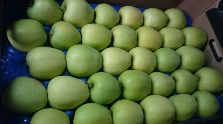 Jabłka Golden od OMEGA