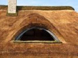 Kupić Pokrycia dachów strzechą z trzciny