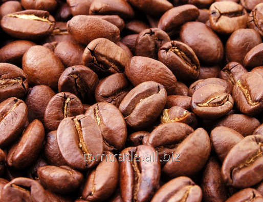 Kupić Kawa mocno palona
